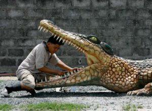 crocodile-3